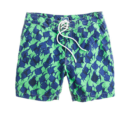 "7"" board shorts in tropical fish"