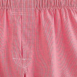 microgingham boxers in red