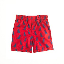 Boys' printed cotton boxers