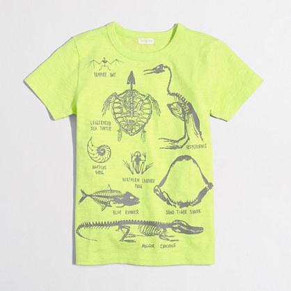 Factory boys' glow-in-the-dark skeleton storybook T-shirt