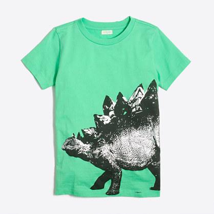 Boys' stegosaurus storybook T-shirt